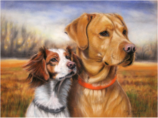 Labrador Retriever and Brittany Spaniel Dog Portrait